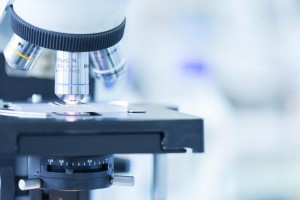 Spinal Cord Injury Research